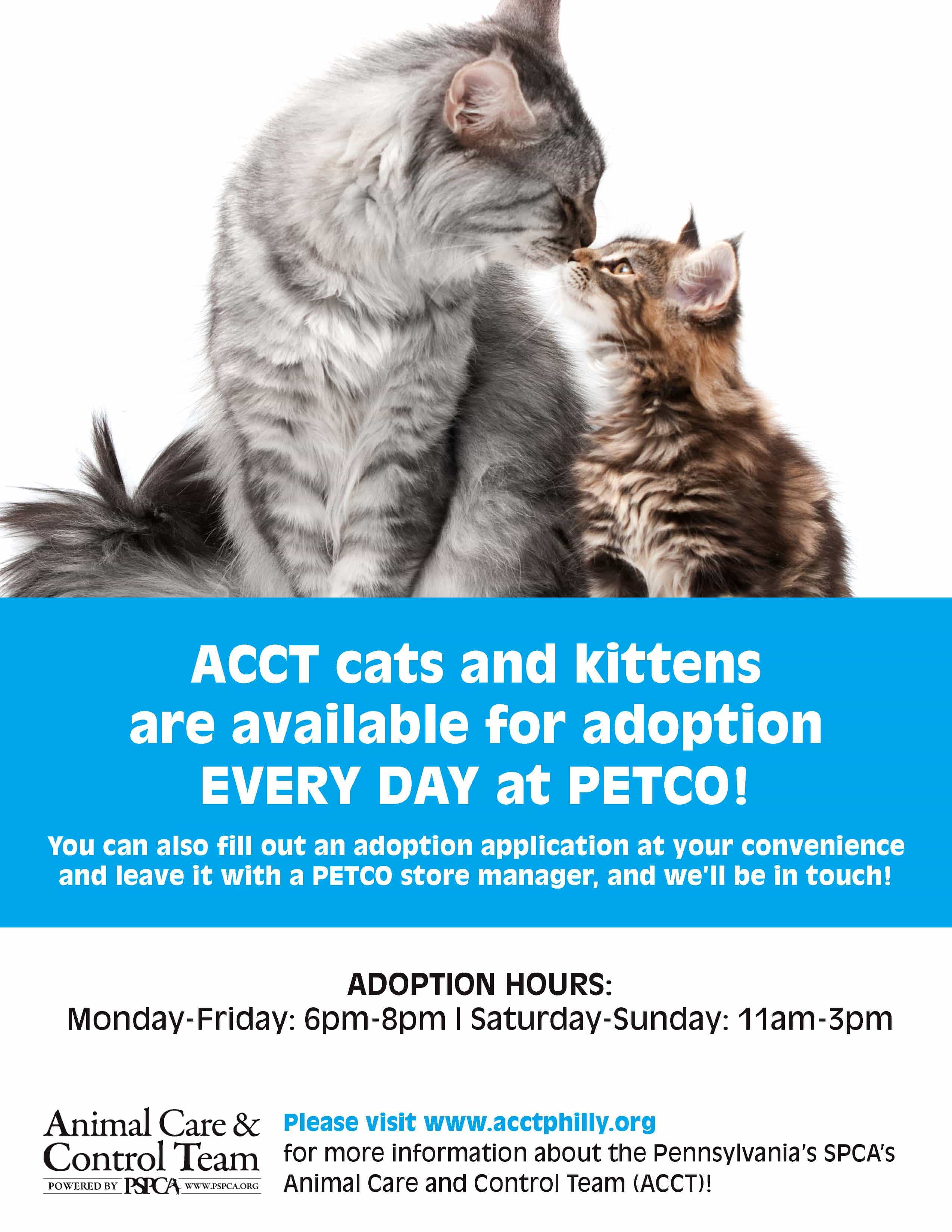 ACCT Begins Cat Adoptions at New PETCO in Andorra THIS Weekend