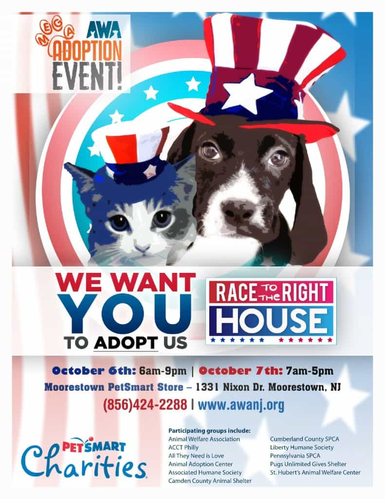 Join us at HUGE 2 Day Adoption Event! | ACCT Philly