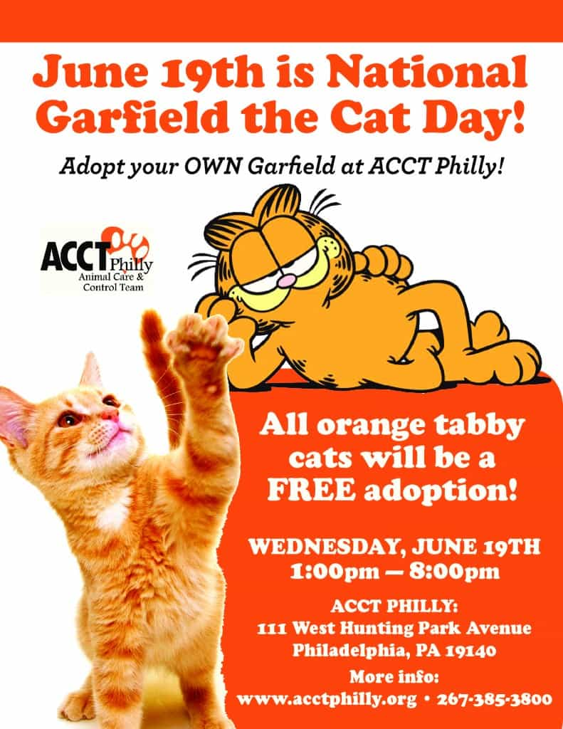 Garfield_Day