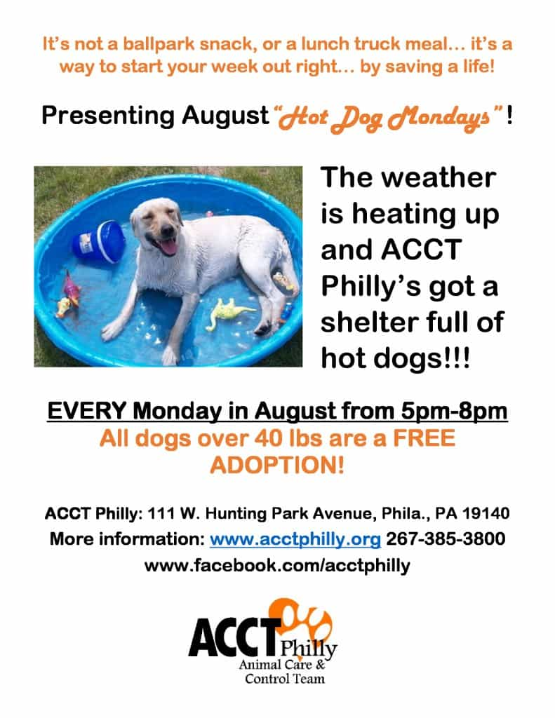 August_Hot_Dog_Mondays
