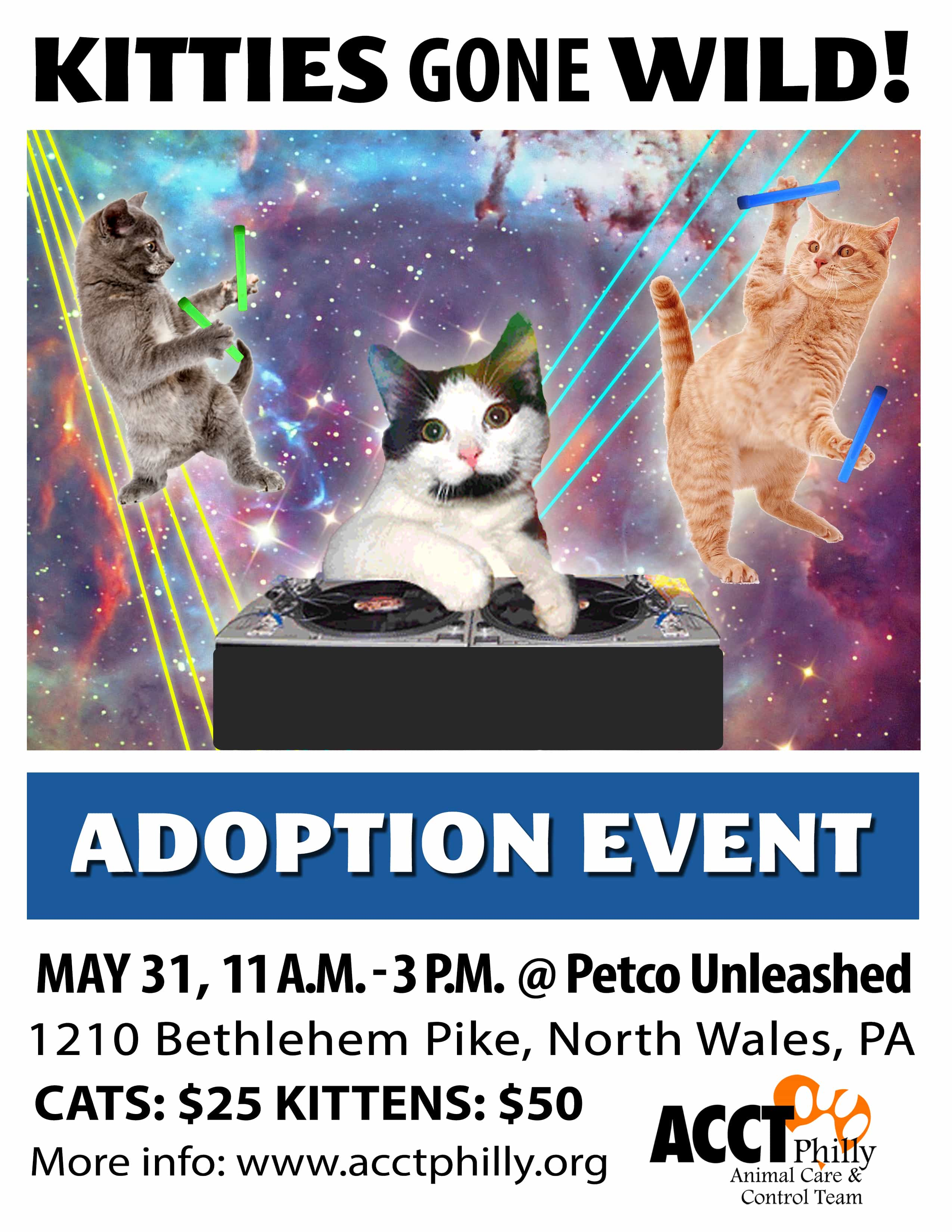 May Adoption Specials & Events | ACCT Philly