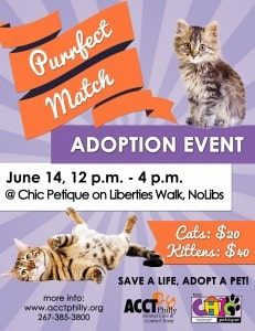 purrfect match adoption event JUNE