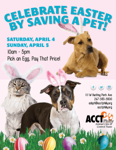 Easter_Adoption_Event_2015_72