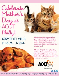 Mothers_Day_Event 2015_2