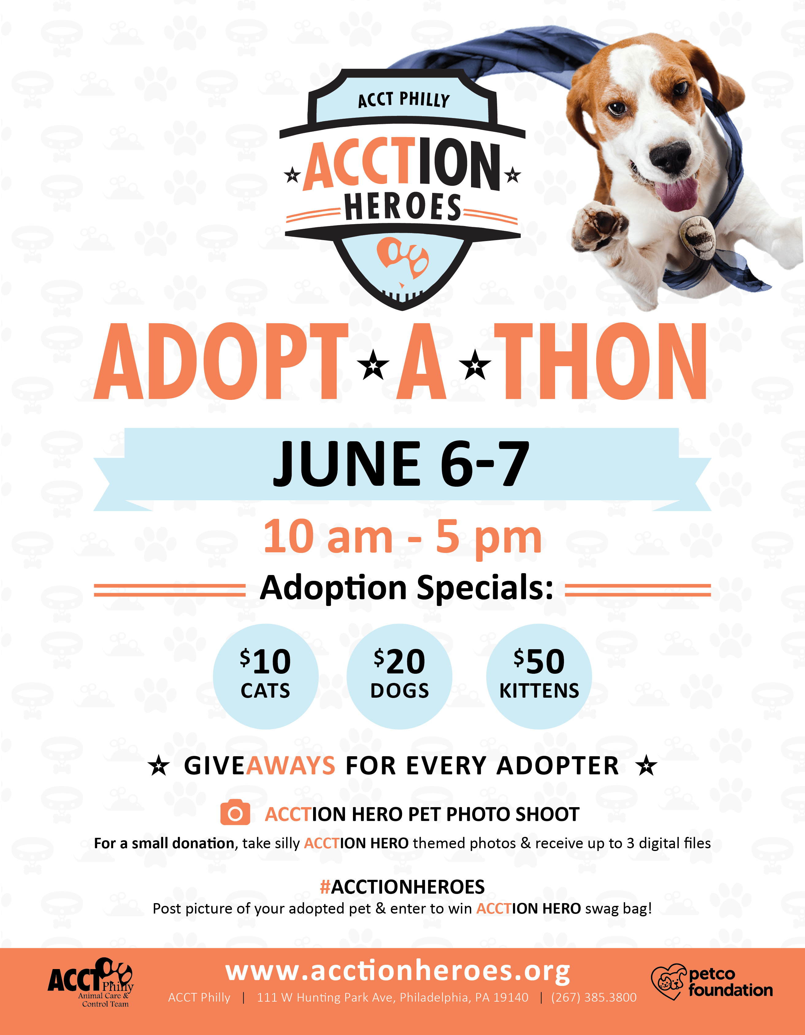 Reasons To Adopt Dogs Website