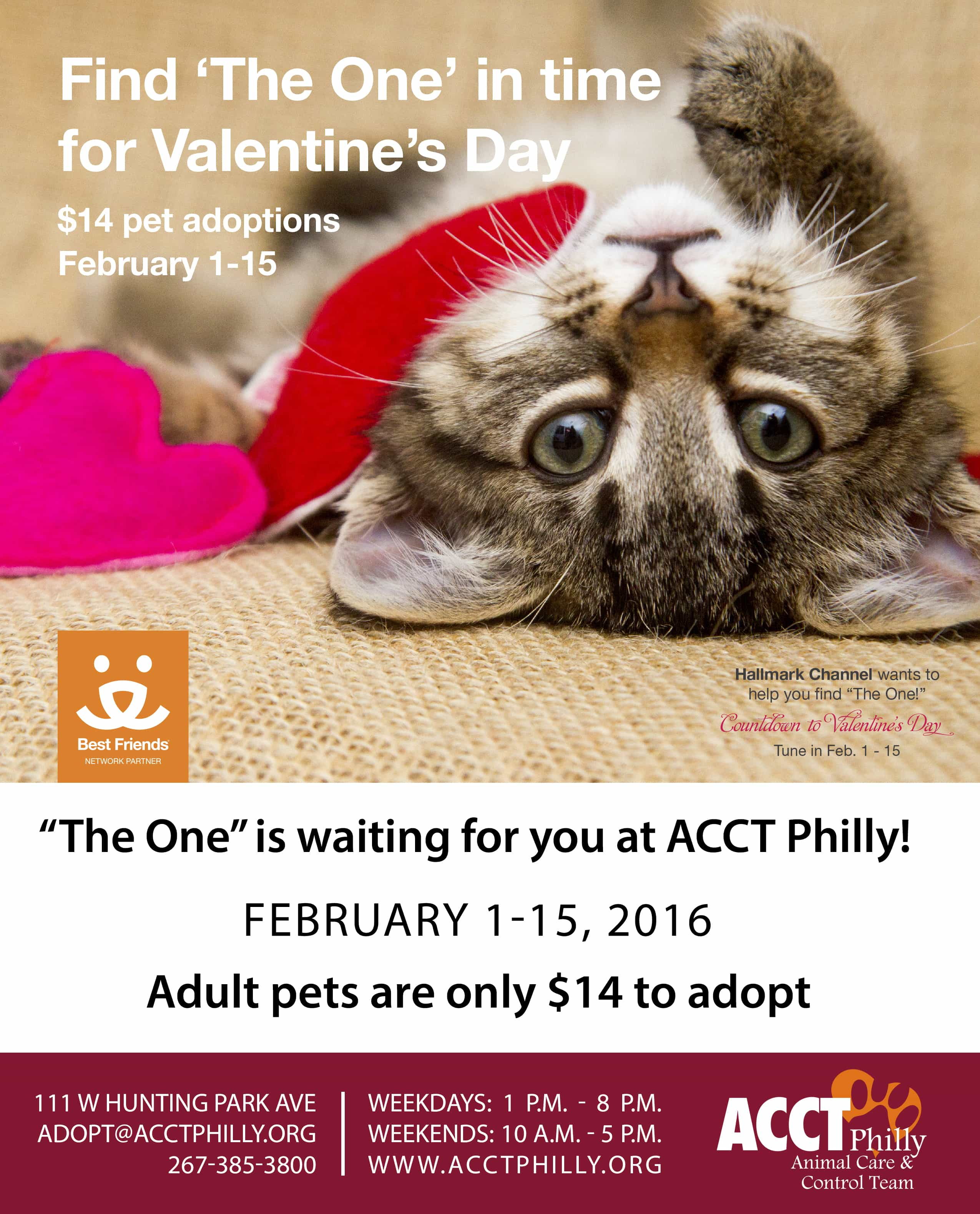 Fall In Love This Valentine S Day Weekend Acct Philly