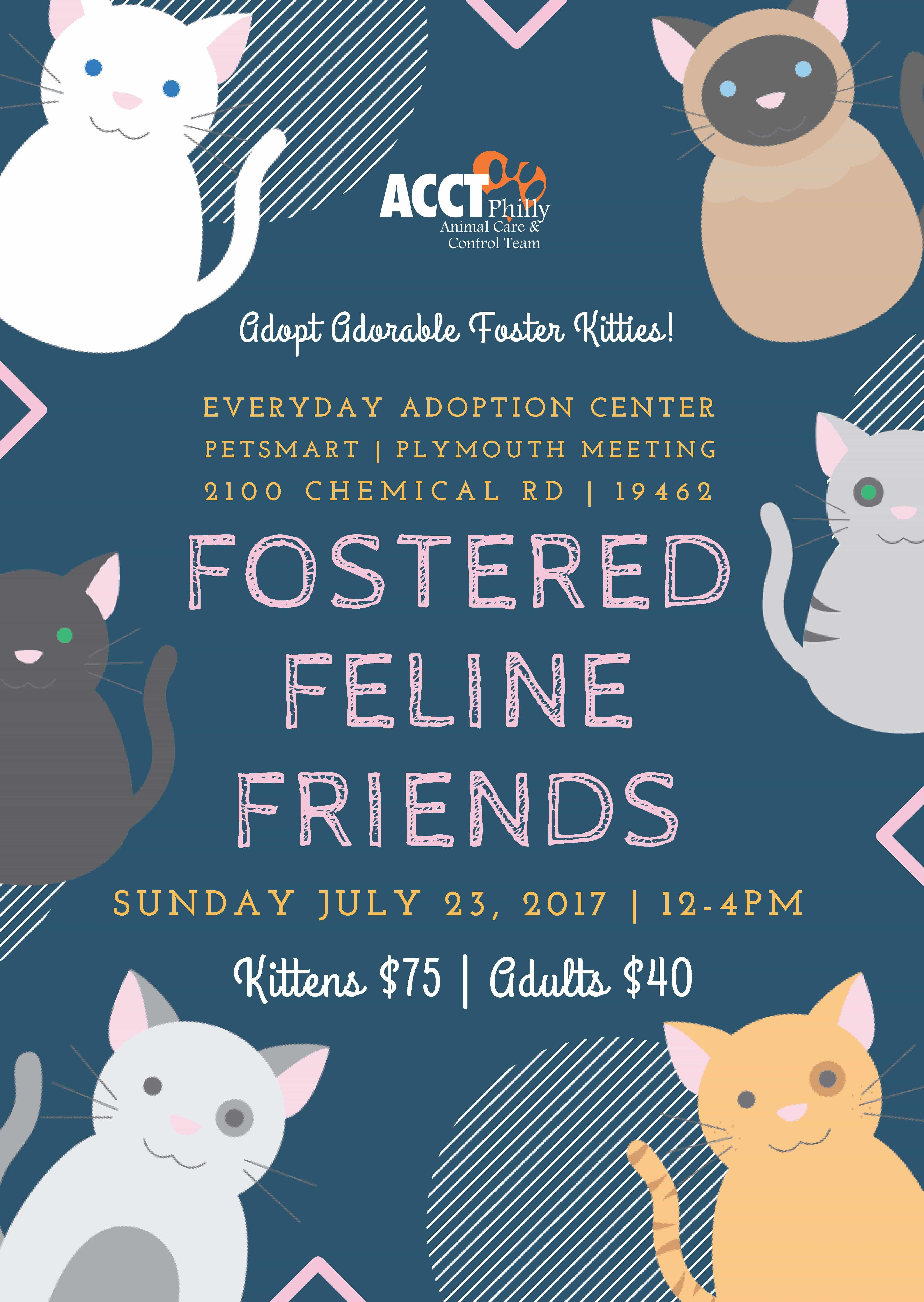 July Adoption Events and Promotions | ACCT Philly
