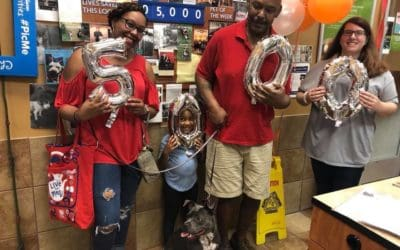 ACCT Philly's Everyday Adoption Center Reaches 5,000 Adoptions