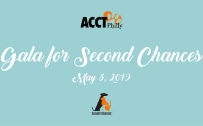 ACCT Philly Hosts Its First Gala for Second Chances on May 3, 2019