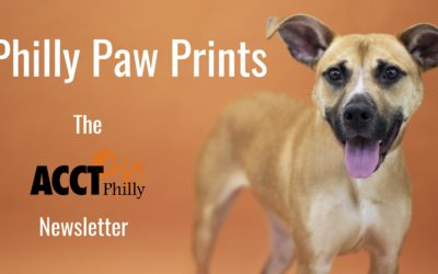 Philly Paw Prints – March 2019