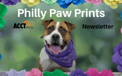 Philly Paw Prints – April 2019