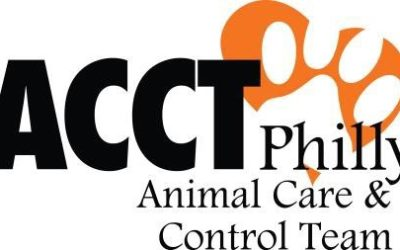 Update on Upper Respiratory Infections in Dog Population at ACCT Philly